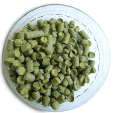 East Kent Goldings Hop Pellets (UK) - 1 oz.