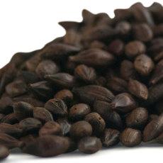 Sugar Creek Barrel Aged Chocolate Malt