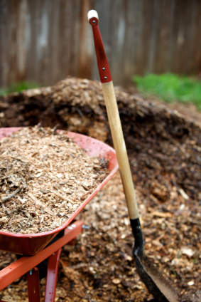 Use bark dust to create a beautiful and natural mulch