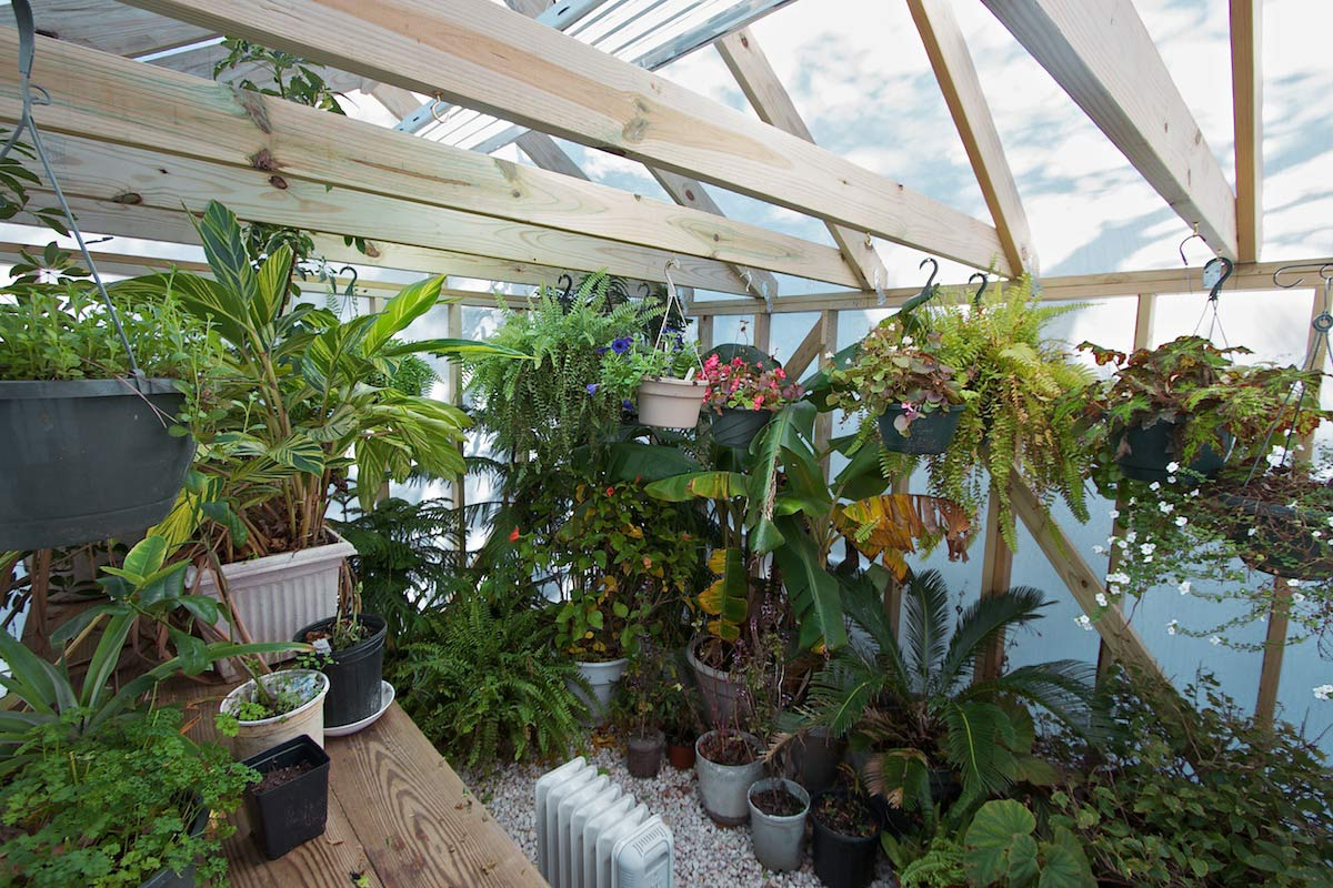 Solexx was used to turn this greenhouse into a tropical sunroom.