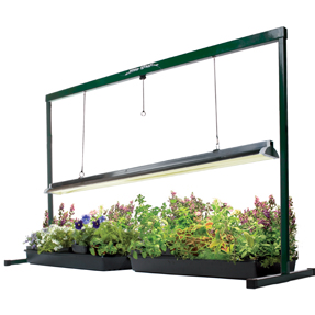T5 Fluorescent Grow Light System
