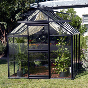 Greenhouse with glass covering.