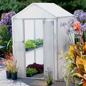Superbe Build A Mini Greenhouse Like The Litu0027l Propagator For Optimum Insulation