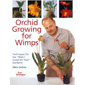 Orchid Growing For Wimps