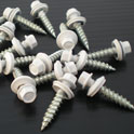 "1"" Wood Screws (100 ct)"