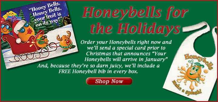 Honeybells for the Holidays