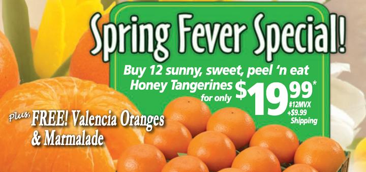 FREE Oranges & Marmalade
