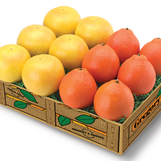 Honeybells & Ruby Reds - 3 trays Honeybells & Ruby Reds