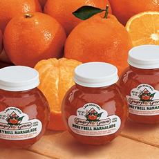 Grandma Gregory's Honeybell Marmalade - Grandma Gregory's Honeybell Marmalade 9 pack