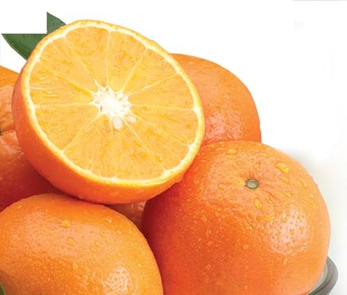 Temple Oranges (Royal Tangerines)
