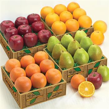 Four Fruit Medley