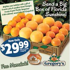 Big Box of Florida Sunshine