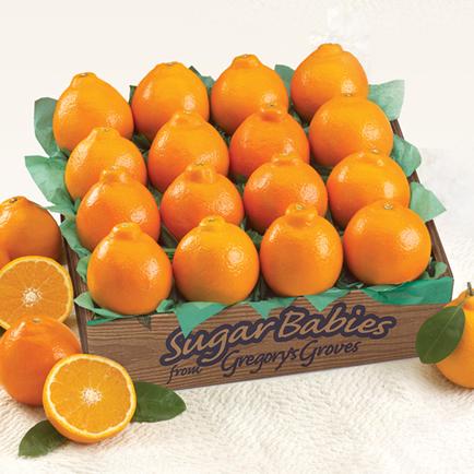 Sweet Sixteen Sugar Babies