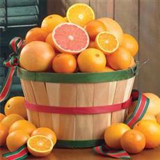 Holiday Boca Grande Basket