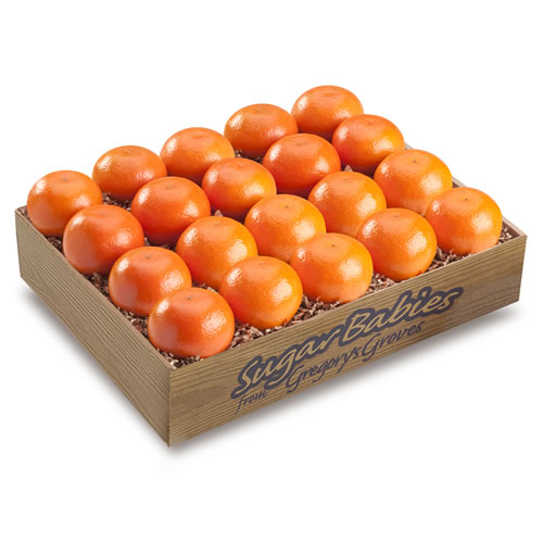 Sugar Baby Temples (Royal Tangerines)
