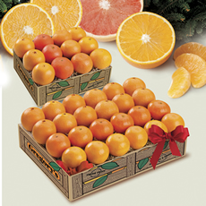 Supersize Your Fruit! - 12-piece gift box + Free Marmalade