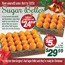 Sugar Belles - 12 Sugar Belles