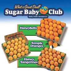 3-Month Sugar Baby Club