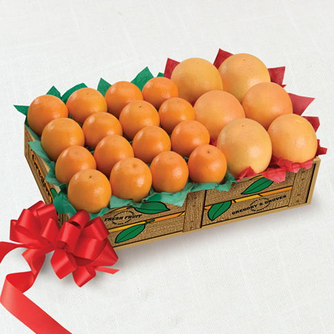 Rudy Reds and Christmas Tangerines