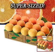 Super-Sized Grapefruit Trio