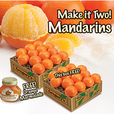 Make It Two! Mandarins
