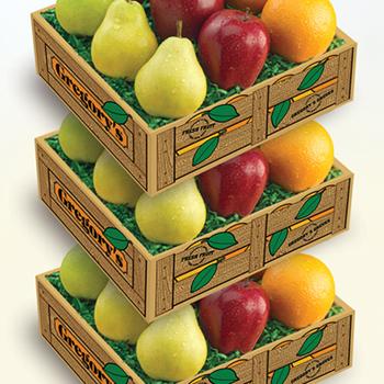 Triple Fruit Medley