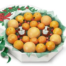 Citrus Christmas Wreath