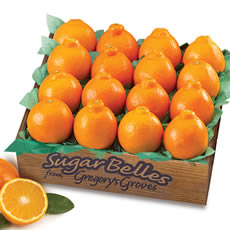 Free Shipping!  Sugar Belles 16-Piece Gift Box