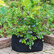 Grow Tub<sup>&reg;</sup> 15 Gallon