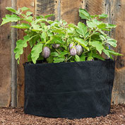 Grow Tub<sup>&reg;</sup> 10 Gallon