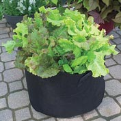Grow Tub<sup>®</sup> 7 Gallon