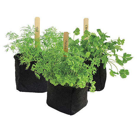 Grow Tub<sup>&reg;</sup>Herb/Transplant Pots