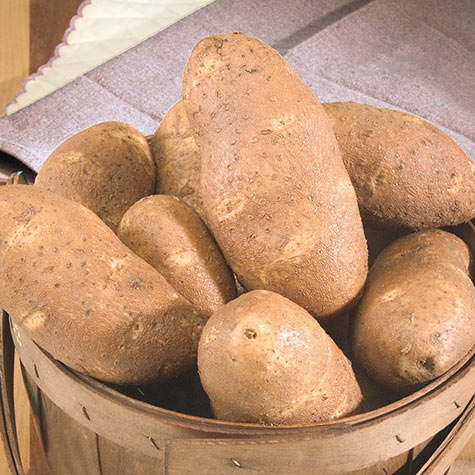 Goldrush Potatoes