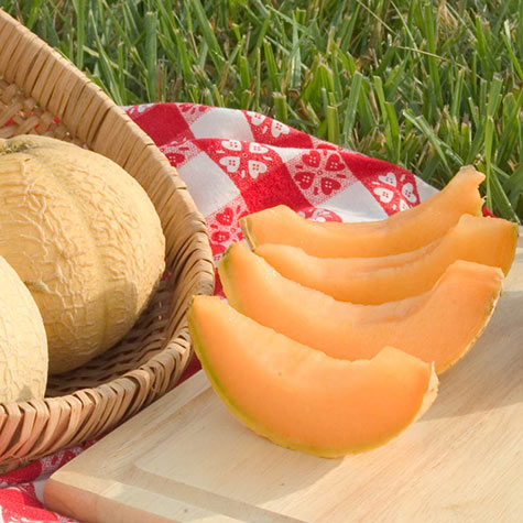 Gurney's® Li'l Sweet Improved Hybrid Cantaloupe