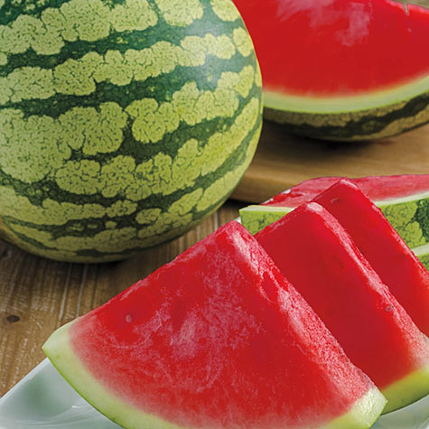 Gurney's<sup>&reg; </sup>Delight Improved Hybrid Watermelon