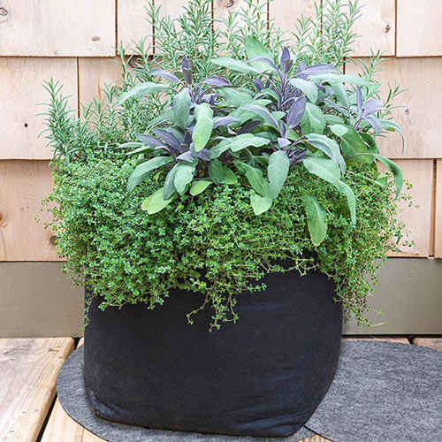Grow Tub<sup>®</sup> Container Mats