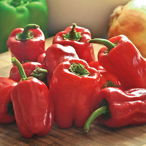 Cajun Belle Hybrid Hot Pepper