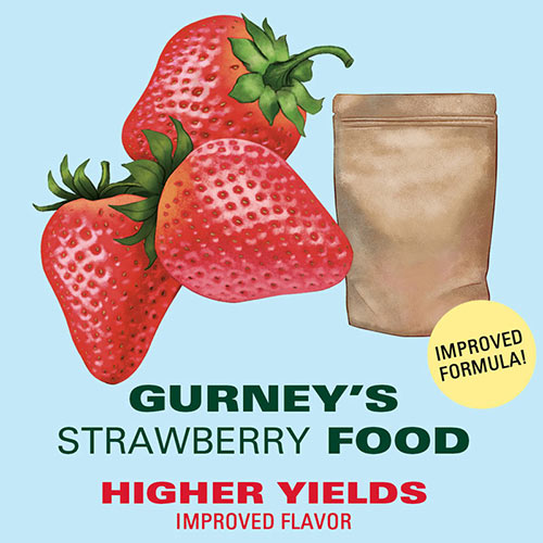 Gurney's<sup>®</sup> Strawberry Food - Fertilizer