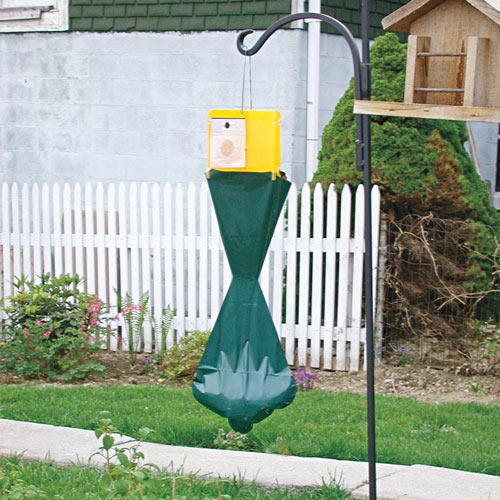 Japanese Beetle Lure & Trap