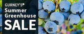 Gurney's Summer Greenhouse Sale