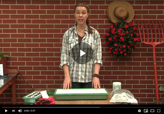 Gurney's Seed Starting Kit Instructional Video