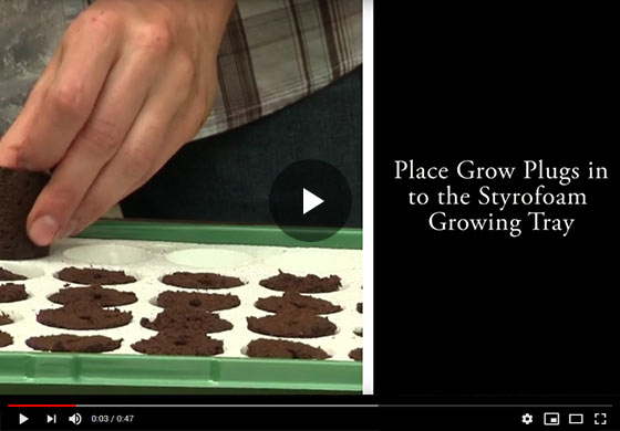 Gurneys Seed Starting Kit Video