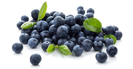 Gurneys Blueberries