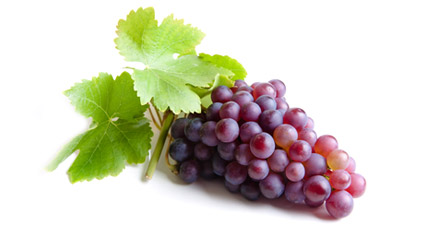 Gurneys Grapes