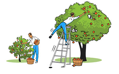 Reachables are easy to grow