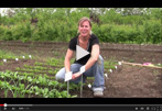 How to Grow Radishes from Seed