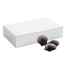 Sweet Shells Bulk Box 80 pc