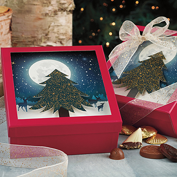 Starry Night Gift Assortment