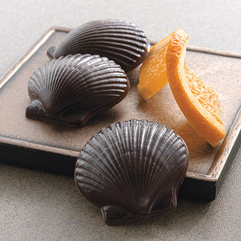 Sweet Shells - Sweet Shells Gable Box - 12 pc