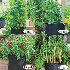 Henry Field's Grow Tubs<sup>&reg;</sup>